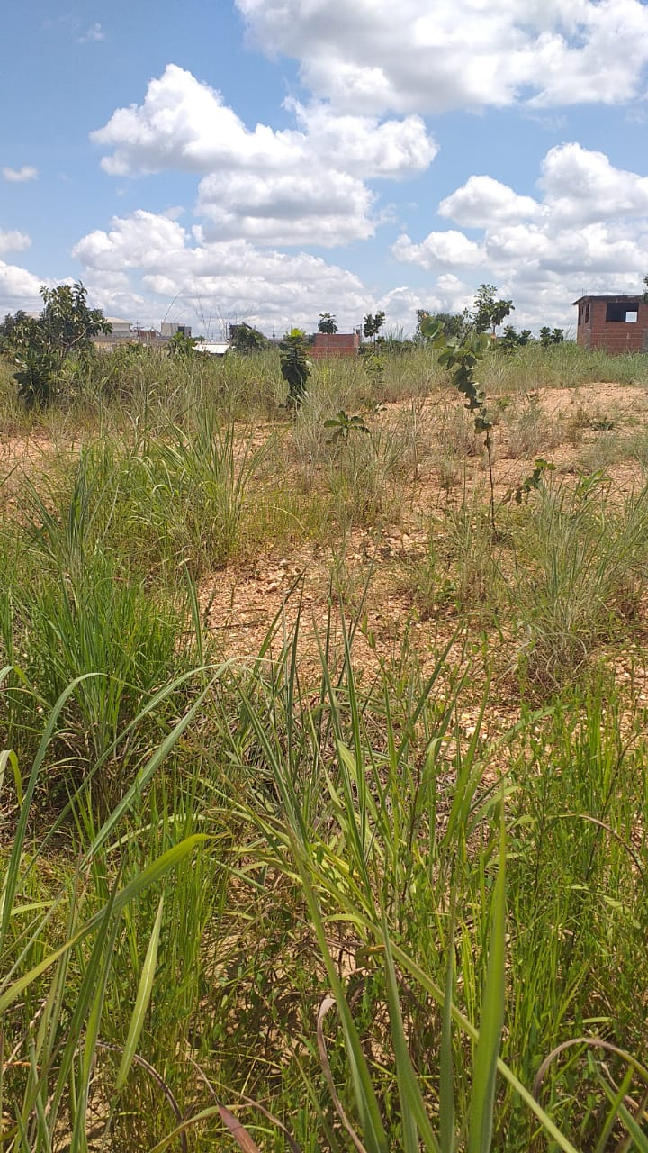 Terreno à venda,  no Ribeirão do Lipa em Cuiabá MT 101 12728