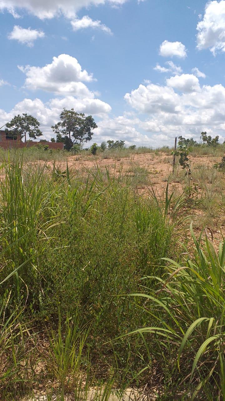 Terreno  no Ribeirão do Lipa, Cuiabá  - MT
