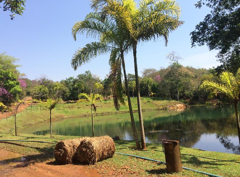 https://www.imoveltop.com.br/imagens/imovel/3/02341/0033.jpg