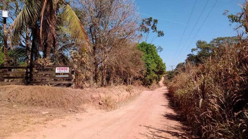 Área Rural  Alta Floresta  - MT