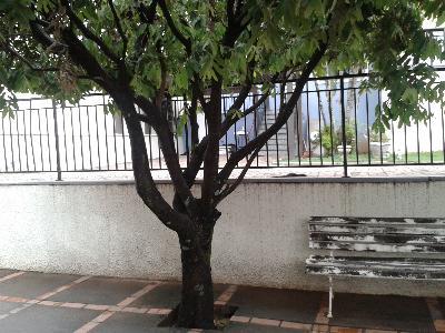 Casa Cond. Fechado  com 3 quartos sendo 1 Suíte no Jardim Flamboyant, Cuiabá  - MT