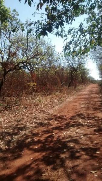 Terreno  no Rodovia Emanuel Pinheiro, Cuiabá  - MT