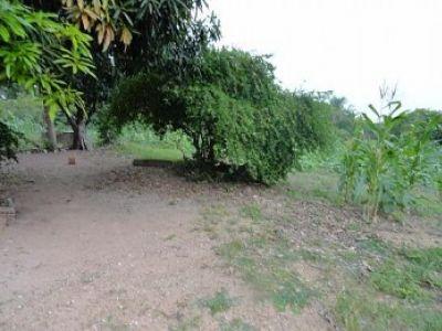 Chácara Sítio  com 6 quartos no Pedra 90, Cuiabá  - MT