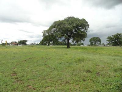 Fazenda  no Zona Rural, Santo Antônio  - RN