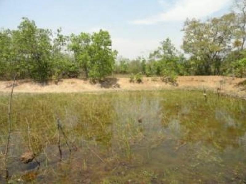 Chácara Sítio  com 1 quarto no zona rural, Acorizal  - MT