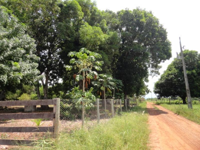 Chácara Sítio  com 1 quarto no Cinturão verde, Cuiabá  - MT