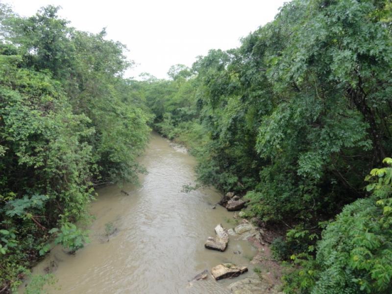 Chácara Sítio  com 1 quarto no Área Rural de Cuiabá, Cuiabá  - MT