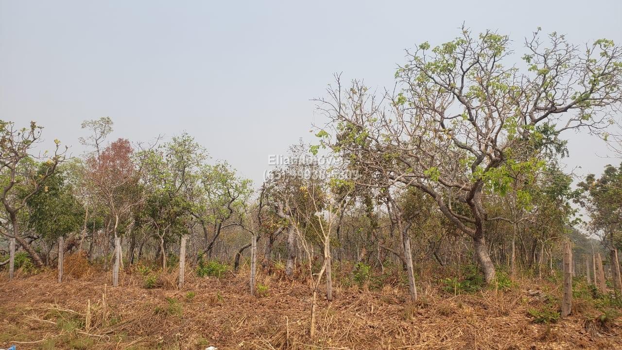 Área Urbana  no Zona Rural, Santo Antônio do Leverger  - MT
