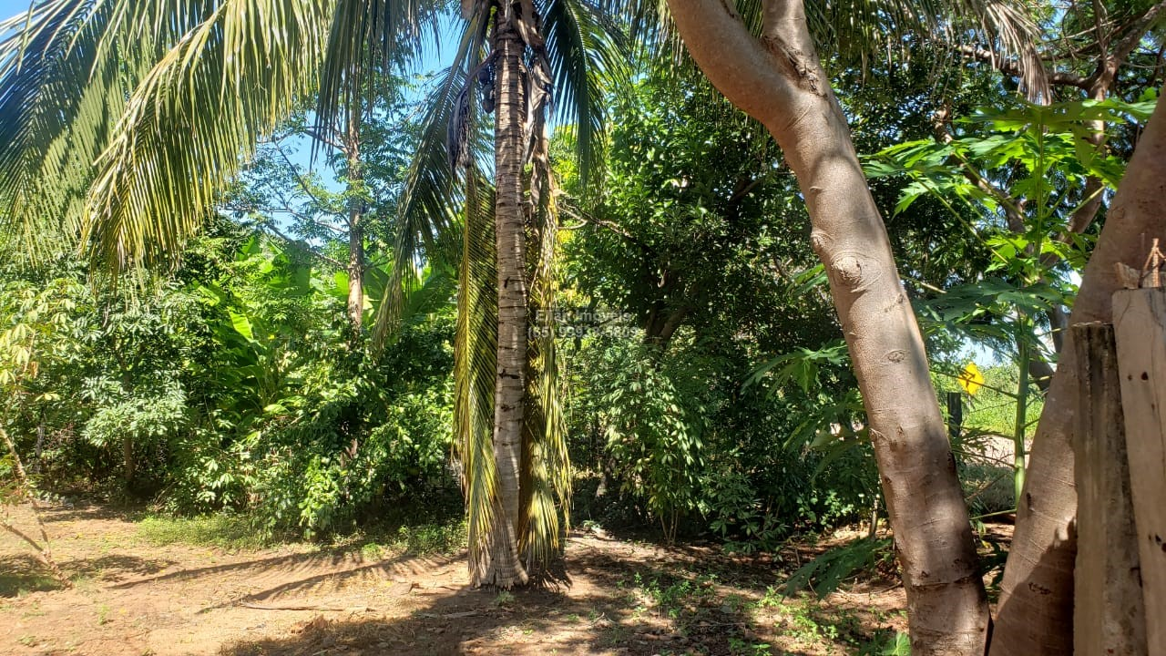 Chácara Sítio  no Centro, Santo Antônio do Leverger  - MT